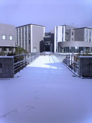snow_kutc.jpg
